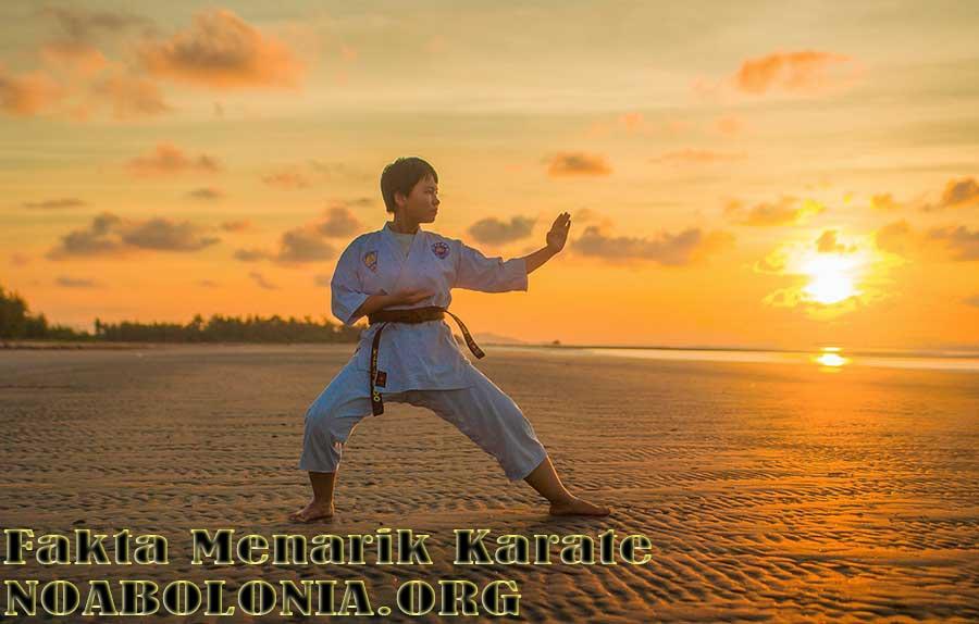 Fakta Menarik Karate
