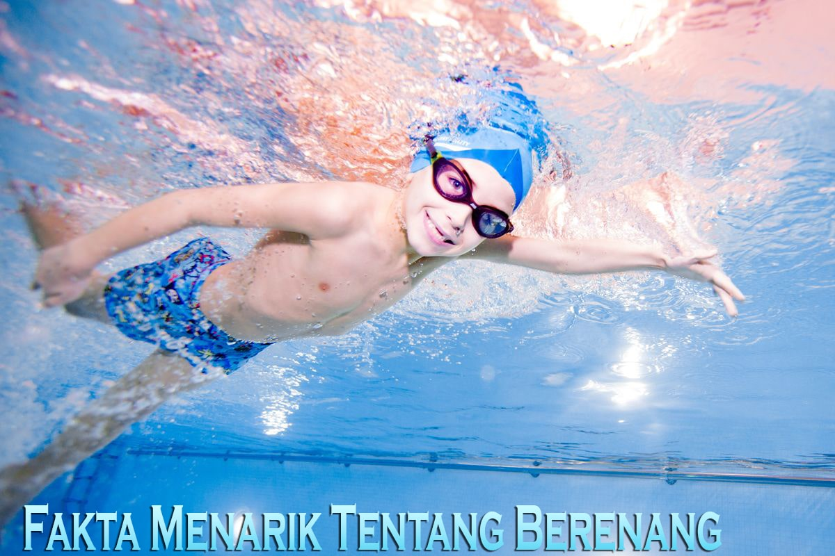 Fakta Menarik Tentang Berenang